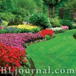 Современный садово-парковый дизайн