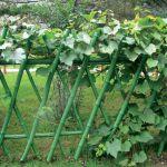 Декоративные ширмы: легкий штрих в убранстве сада