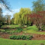 Несколько советов по садоводству, которые Вам существенно помогут!
