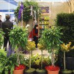 П'ята спеціалізована виставка «Насіння та реманент–2008», Третя спеціалізована виставка «АгроТехніка–2008» та Перша спеціалізована виставка «Квіти та ландшафт–2008».