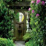 Просторный сад