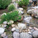 Сад «Журчанье ручья»