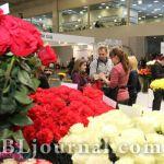 9–11 сентября пройдет «ЦветыЭкспо-2013» — важная площадка цветочного бизнеса