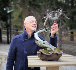 Приглашаем на вебинар «Создание художественного образа дерева с помощью обрезки», 23.04.2019