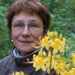 Светлана Воронина